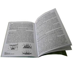 Книга Груша