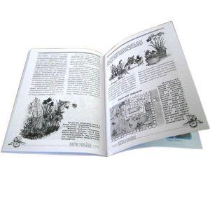 Книга Іриси