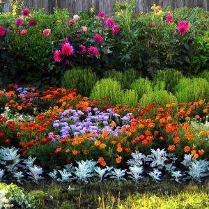 Поддержка для растений Заборчик Майдан