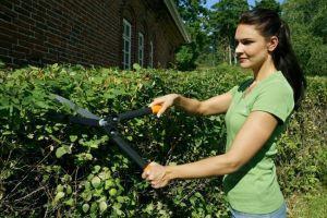 Ножницы Truper садовые для живой изгороди