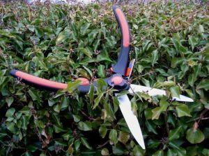 Ножницы Truper для живой изгороди, для двух рук (48 см)