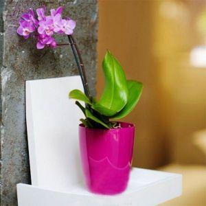 Вазон для орхидей пурпурный 2 л