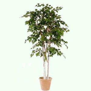 Горшок для цветов Дерево Пальма-1