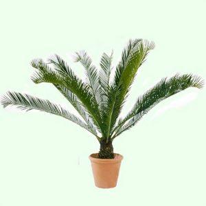 Горшок для цветов Дерево Пальма-3