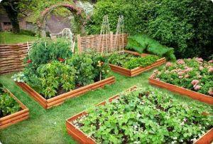 Удобрение Чистый Лист для сада и огорода, 20 г