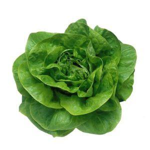 Салат кочанный  маслянистый Козима