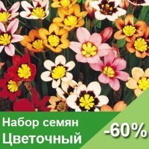 Набор семян Цветочный
