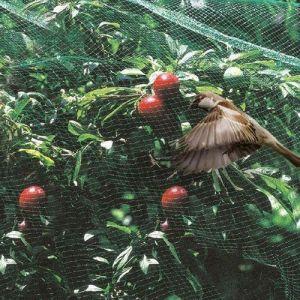 Сетка для защиты от птиц Антиптица, 2х100м ячейки 20х20 мм
